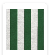 Neoprene Cover – Green Stripes (COSNC-60-STRGreen)